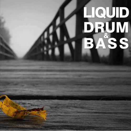 Liquid Drum & Bass Sessions | Fokuz Recordings