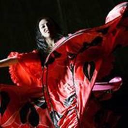 Tapas Meal & Flamenco Show
