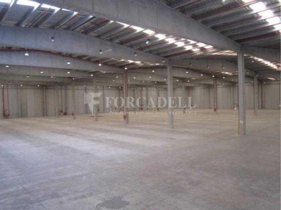 Nave logística - industrial de 9.738  m² en venta o  alquiler - El Pla Santa Maria. Tarragona 2