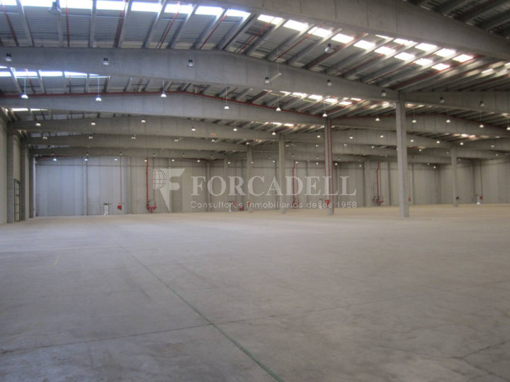 Nave logística - industrial de 9.738  m² en venta o  alquiler - El Pla Santa Maria. Tarragona 4
