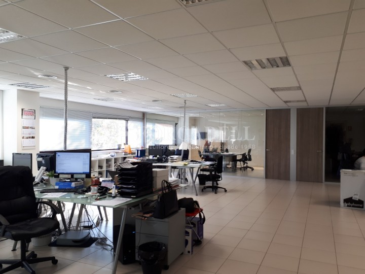 Nau industrial en lloguer de 4.306 m² - Sabadell, Barcelona #11