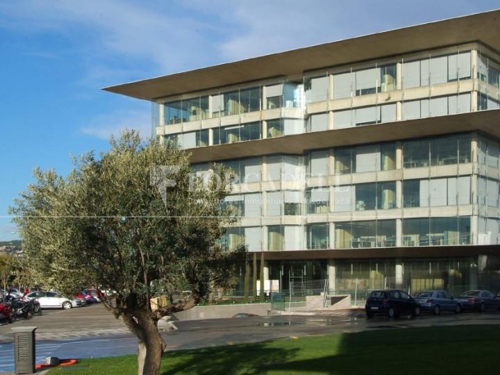 Oficina per llogar al Parc Logístic de la Zona Franca. #2