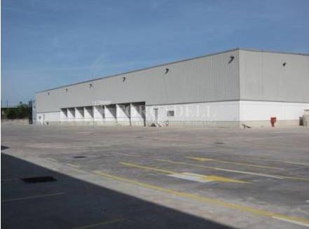 Nau logística de lloguer de 16321 m² - Subirats, Barcelona.  #1