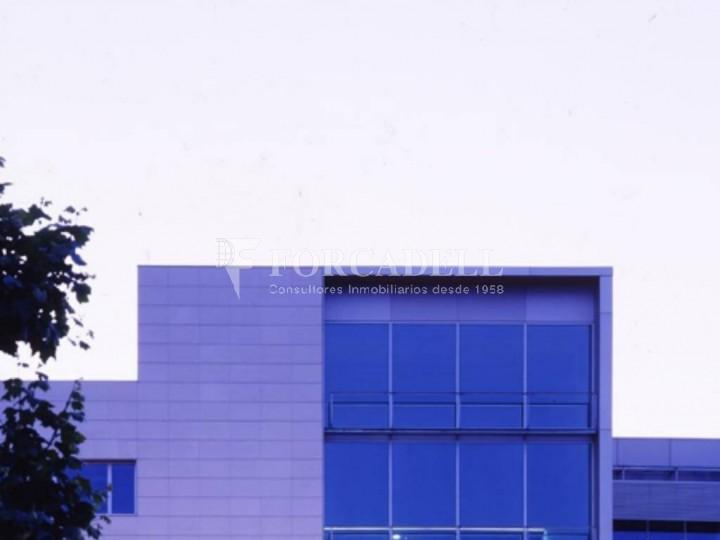 Oficina per llogar al Parc Empresarial Mas Blau. Ed. Muntadas II. El Prat de Llobregat.  4