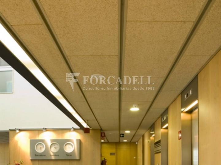 Oficina per llogar al Parc Empresarial Mas Blau. Ed. Muntadas II. El Prat de Llobregat.  6