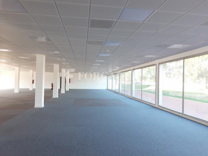 Oficina per llogar a l'edifici Muntadas II. El Prat de Llobregat.  17