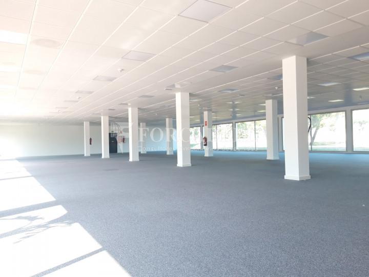 Oficina per llogar a l'edifici Muntadas II. El Prat de Llobregat.  11