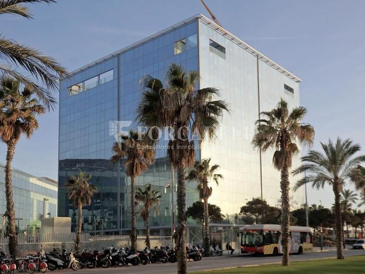 Oficina de lloguer lluminosa, davant del mar. Passeig Joan de Borbó. Barceloneta. 1