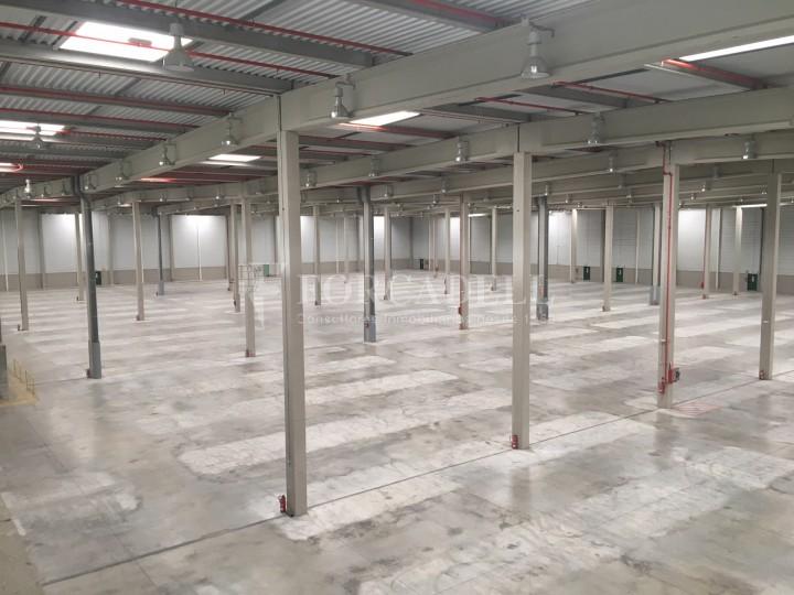 Nau logística en lloguer de 16.751 m² - La Granada del Penedes, Barcelona 4