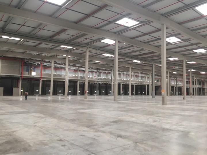 Nau logística en lloguer de 16.751 m² - La Granada del Penedes, Barcelona 6