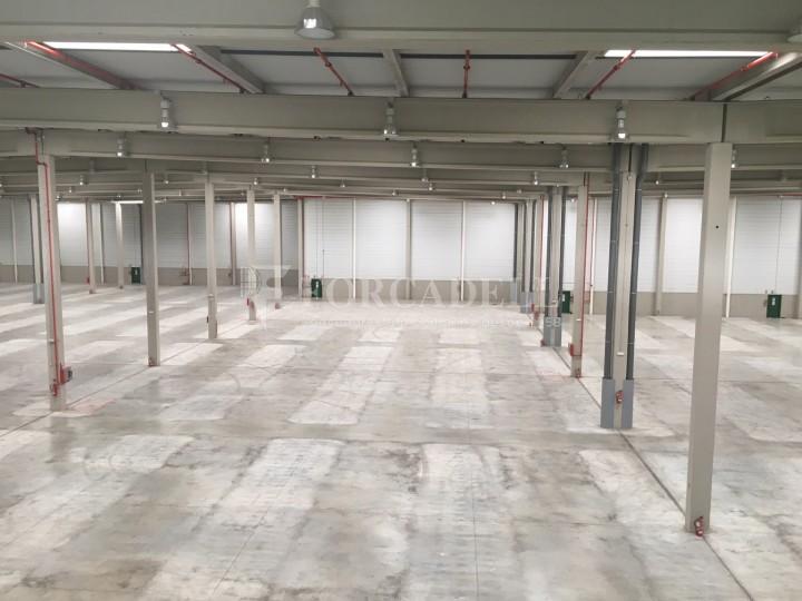 Nau logística en lloguer de 16.751 m² - La Granada del Penedes, Barcelona 9