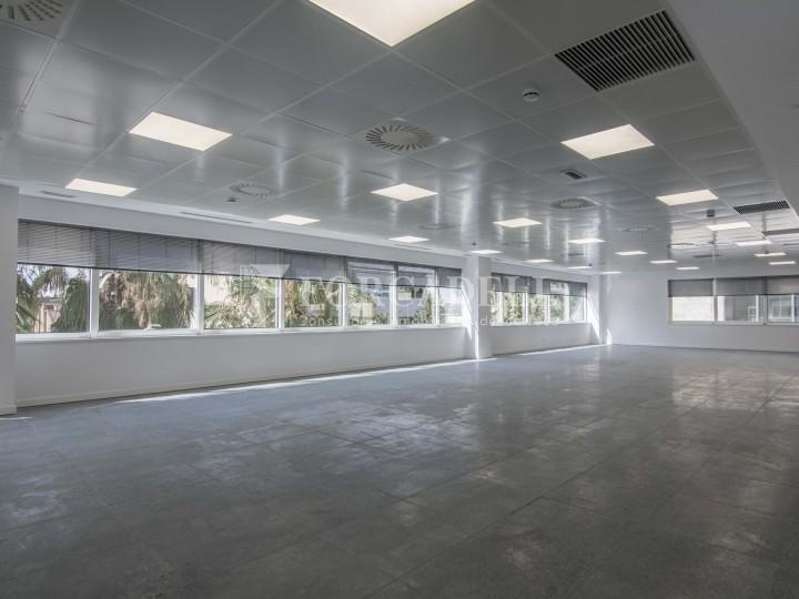 Edifici corporatiu en lloguer. City Parc. Cornellà de Llobregat.  #21