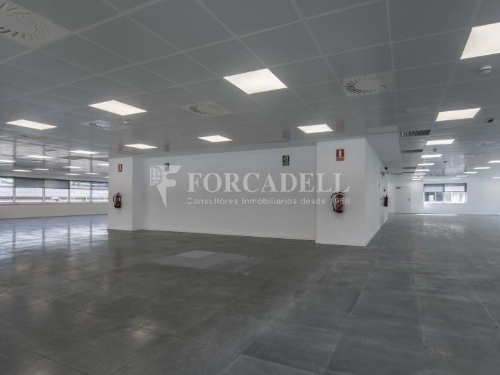 Edifici corporatiu en lloguer. City Parc. Cornellà de Llobregat.  #22