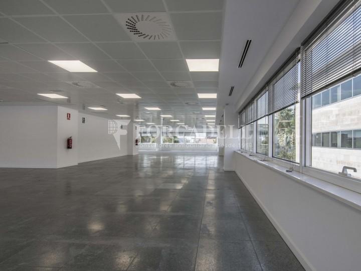 Edifici corporatiu en lloguer. City Parc. Cornellà de Llobregat.  #29
