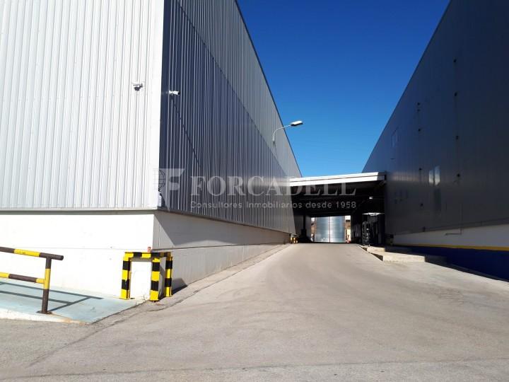 Nau logistica - industrial de lloguer de 3.330 m² - Sant Esteve Sesrovires, Barcelona #7