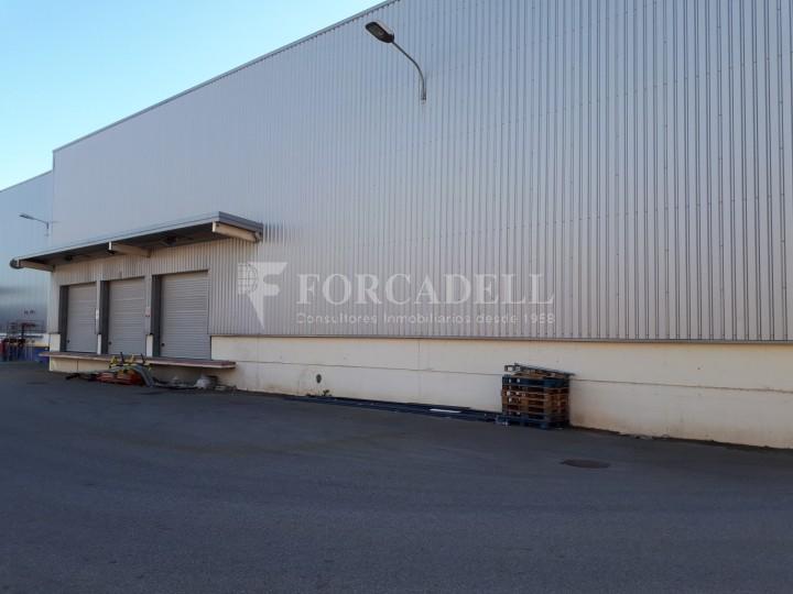 Nau logistica - industrial de lloguer de 3.330 m² - Sant Esteve Sesrovires, Barcelona #9