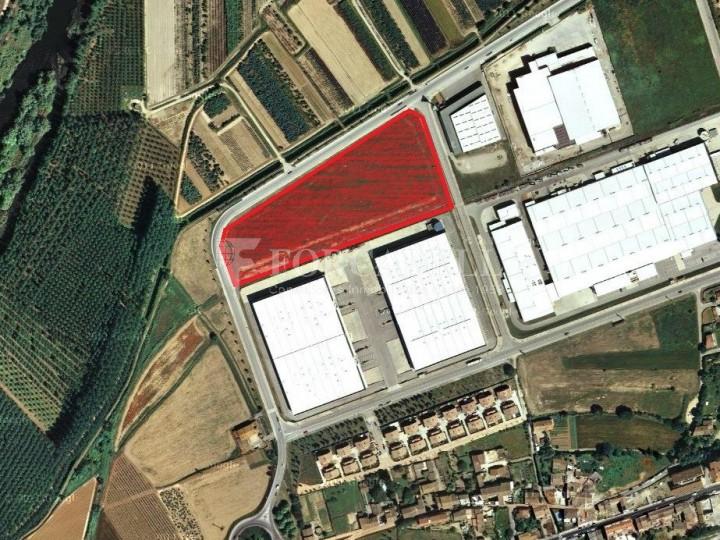 Nau logística en lloguer de 16.911 m² - Celrà. Girona #2