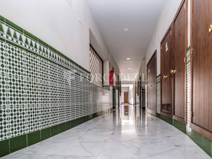 Habitatge en lloguer d' una habitació a Sevilla. 15