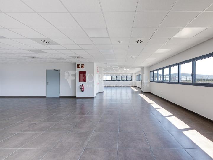 Nave logística en alquiler de 21.419 m² - Sant Esteve Sesrovires, Barcelona 14