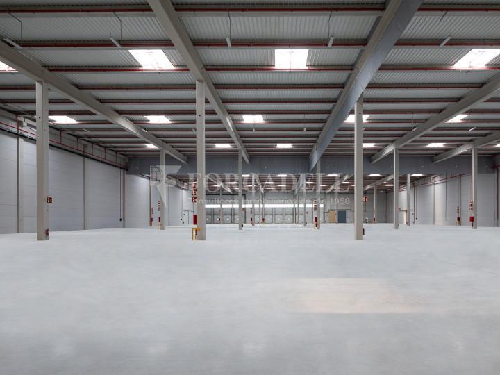 Nave logística en alquiler de 21.419 m² - Sant Esteve Sesrovires, Barcelona 15