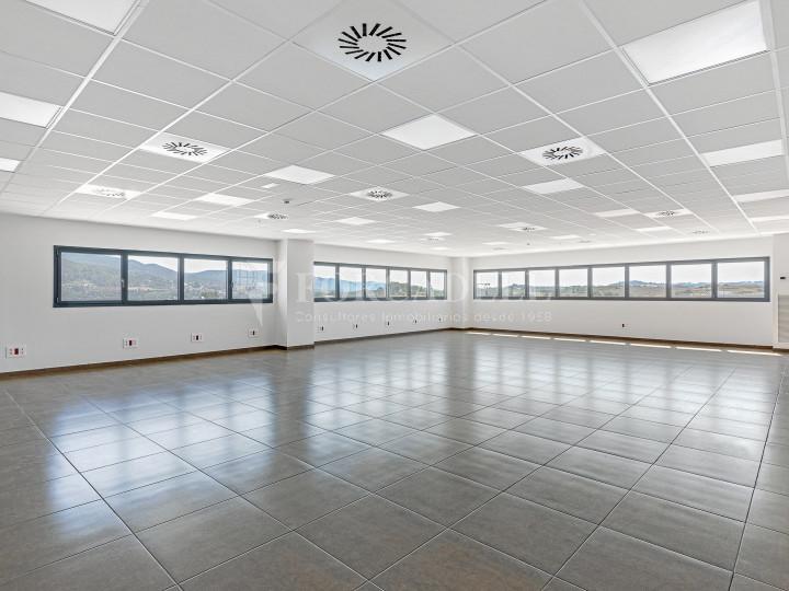 Nave logística en alquiler de 21.419 m² - Sant Esteve Sesrovires, Barcelona #4