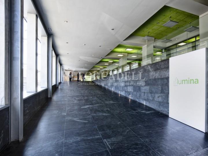 Oficina en lloguer, situada a Esplugues de Llobregat. Barcelona. 11