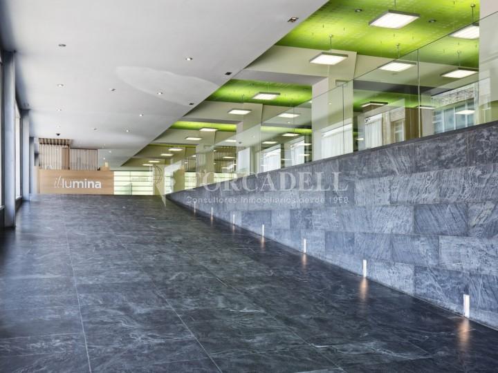 Oficina en lloguer, situada a Esplugues de Llobregat. Barcelona. 13