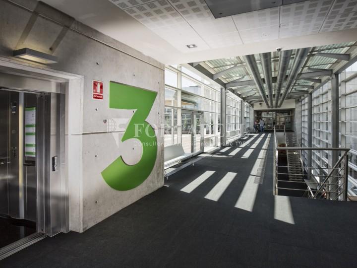 Oficina en lloguer, situada a Esplugues de Llobregat. Barcelona. 19