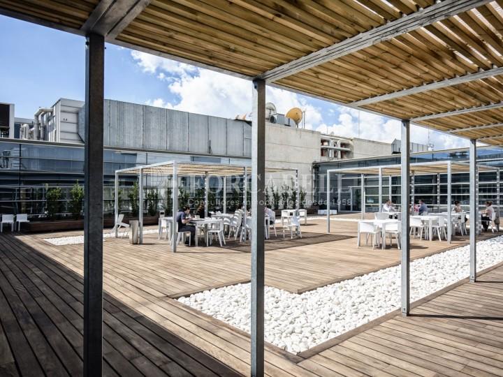 Oficina en lloguer, situada a Esplugues de Llobregat. Barcelona. 23