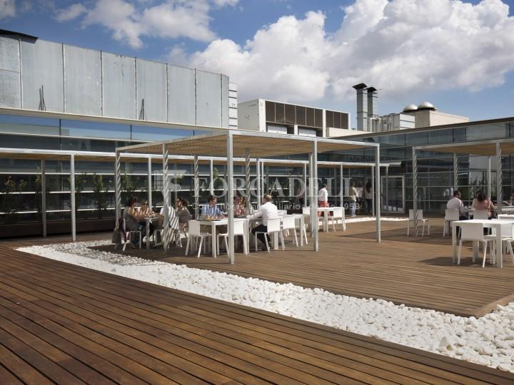 Oficina en lloguer, situada a Esplugues de Llobregat. Barcelona. 28
