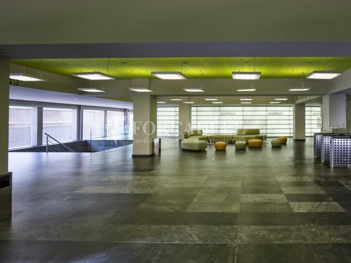 Oficina en lloguer, situada a Esplugues de Llobregat. Barcelona. 8