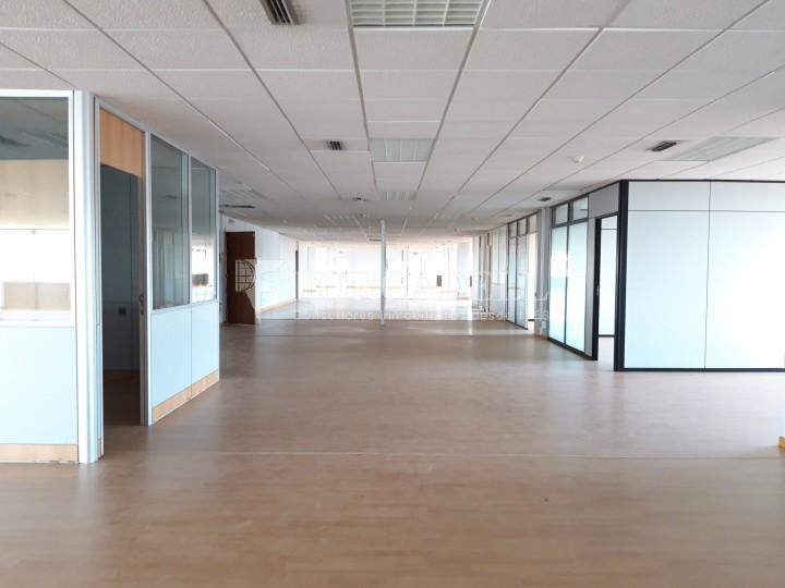 Oficina en lloguer a l'edifici d'oficines Conata II. Sant Joan Despí. #8