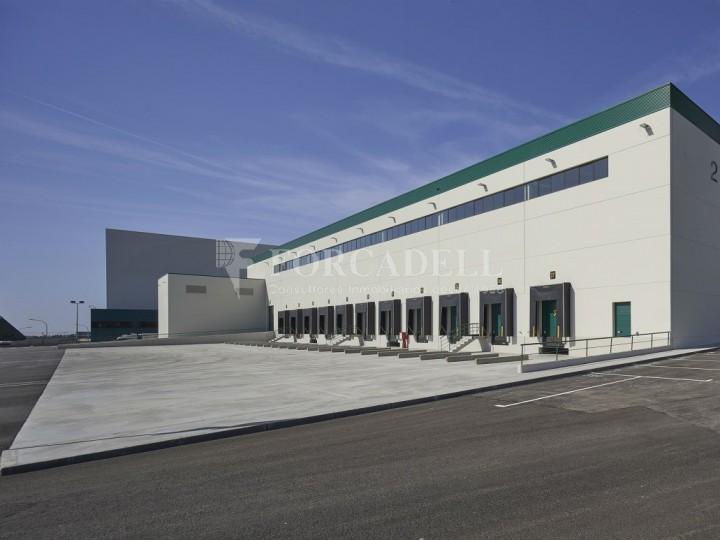 Nave logística en alquiler de 16.139 m² - La Bisbal del Penedes, Tarragona.  14