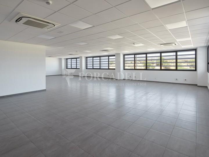 Nave logística en alquiler de 16.139 m² - La Bisbal del Penedes, Tarragona.  21
