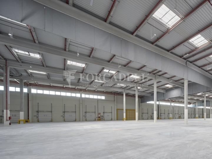 Nave logística en alquiler de 16.139 m² - La Bisbal del Penedes, Tarragona.  5