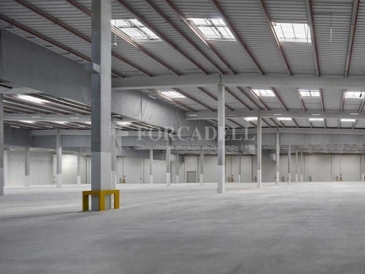 Nave logística en alquiler de 16.139 m² - La Bisbal del Penedes, Tarragona.  6