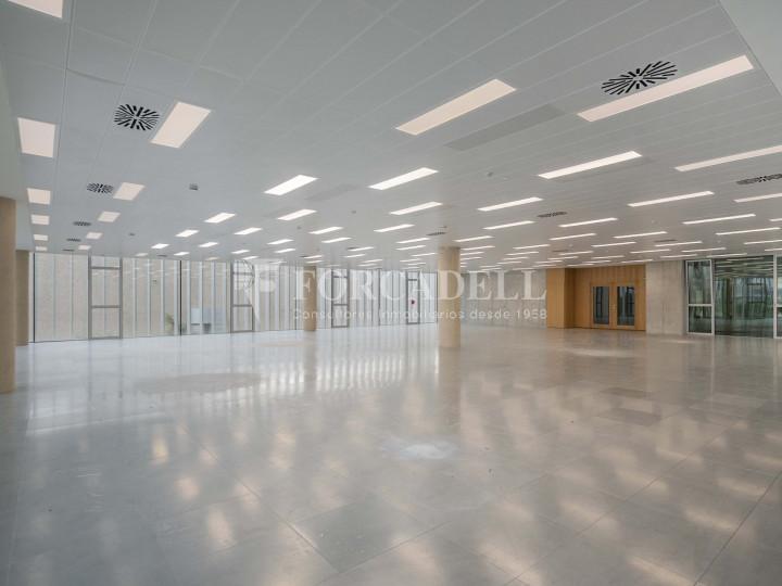 Oficina en lloguer en edifici d'obra nova. Fira Gran Via. Hospitalet de Llobregat. #7