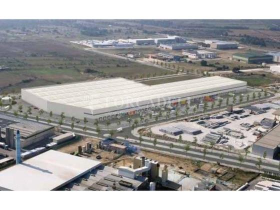 Plataforma logística en alquiler de 18.754  m²  - Pla de Santa Maria, Tarragona. 4