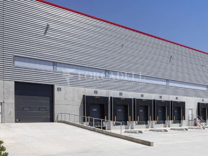 Nau logística en lloguer de 8.050 m² - Sant Esteve Sesrovires, Barcelona #3