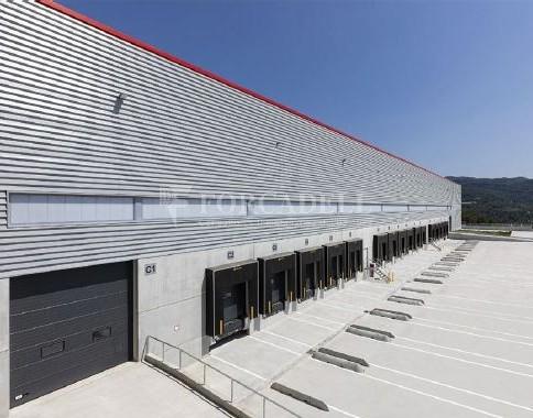 Nau logística en lloguer de 8.057 m² - Sant Esteve Sesrovires, Barcelona 1