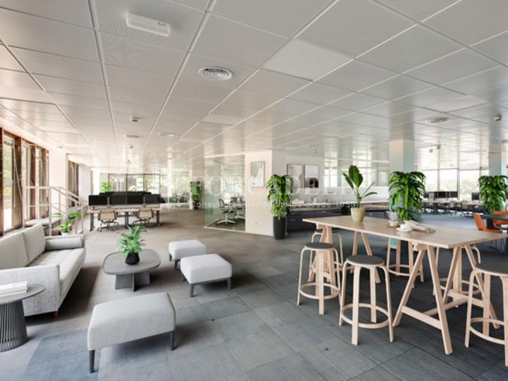 Oficina diàfana i lluminosa en lloguer a l'Avenida Europa. Pozuelo de Alarcón. Madrid.  1