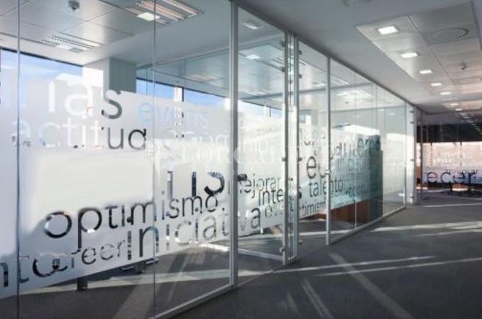 Excel·lent oficina en lloguer al Parc Empresarial Manoteras. Madrid. 9