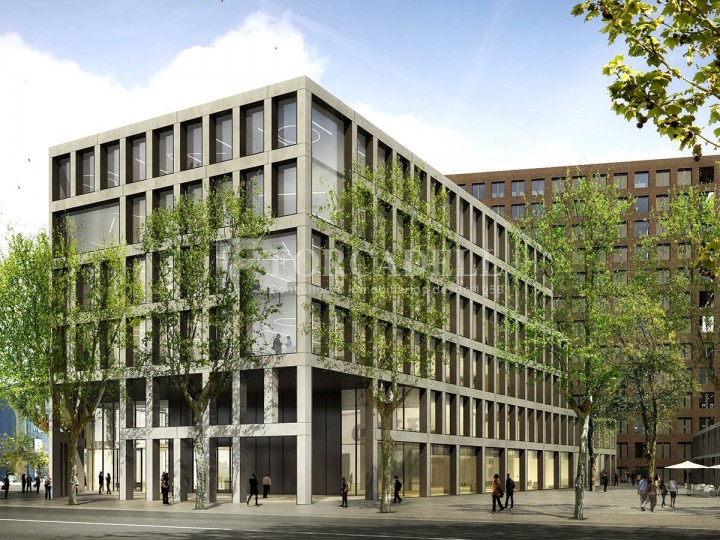 Excel·lent oficina en lloguer al districte 22 @. Barcelona. 5