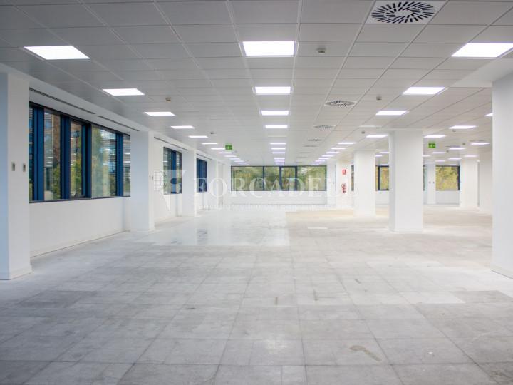 Oficina en alquiler en Fuencarral, parque empresarial Las Tablas.  13