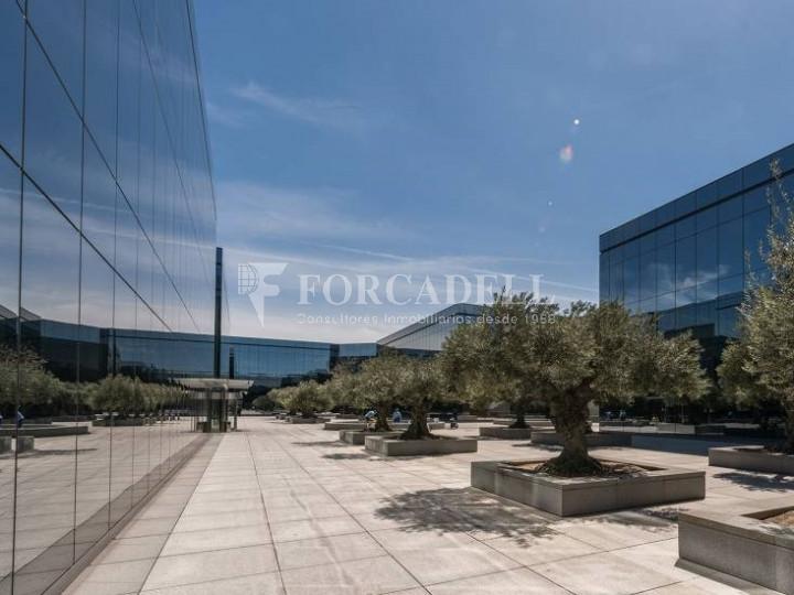 Oficina de lloguer a Parc Empresarial La Finca. Madrid Almeda Park 5