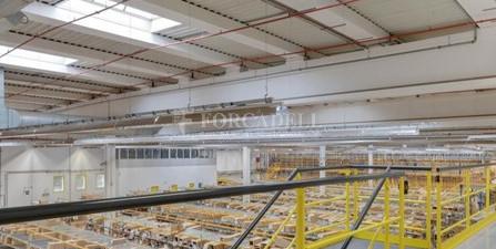 Nau logística en lloguer de 20.078 m² - Montmelo, Barcelona 15