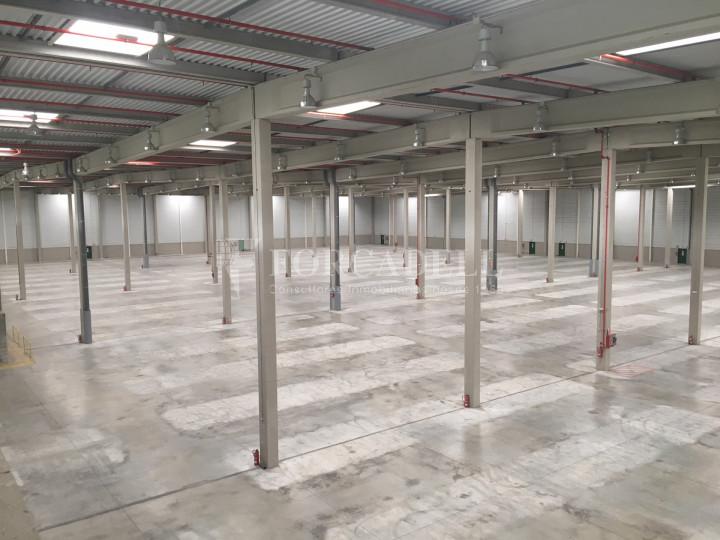 Nau logística en lloguer de 33.260 m² - La Granada del Penedes, Barcelona 4