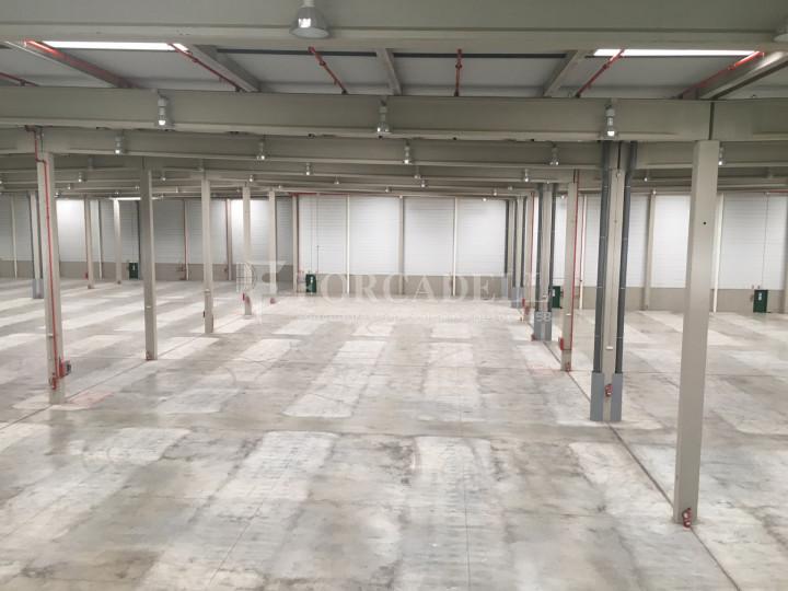 Nau logística en lloguer de 33.260 m² - La Granada del Penedes, Barcelona 9
