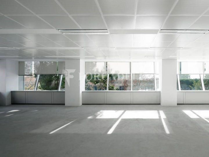 Oficina en lloguer en Zona Prime. Avinguda Diagonal. Barcelona 1