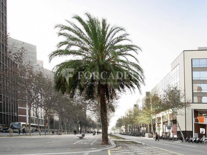 Oficina de lloguer al 22 @. Avinguda Diagonal de Barcelona 8